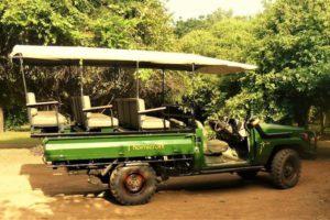 Thornicroft safari vehicle