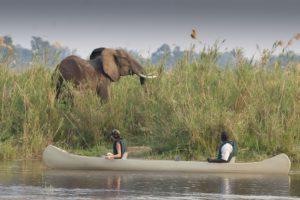 Canoe trip lower zambezi