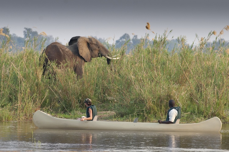 Canoe trip lower zambezi