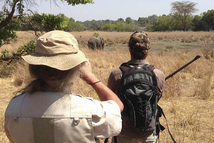 walking safari at Kafue National Park