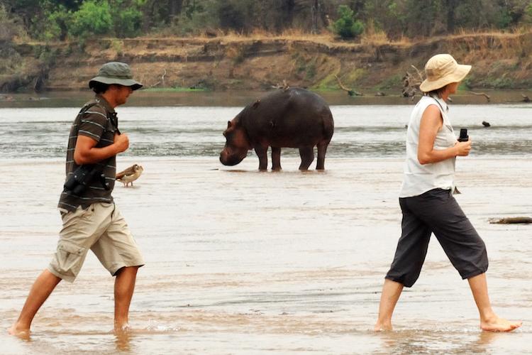 Mwaleshi Camp - river crossing