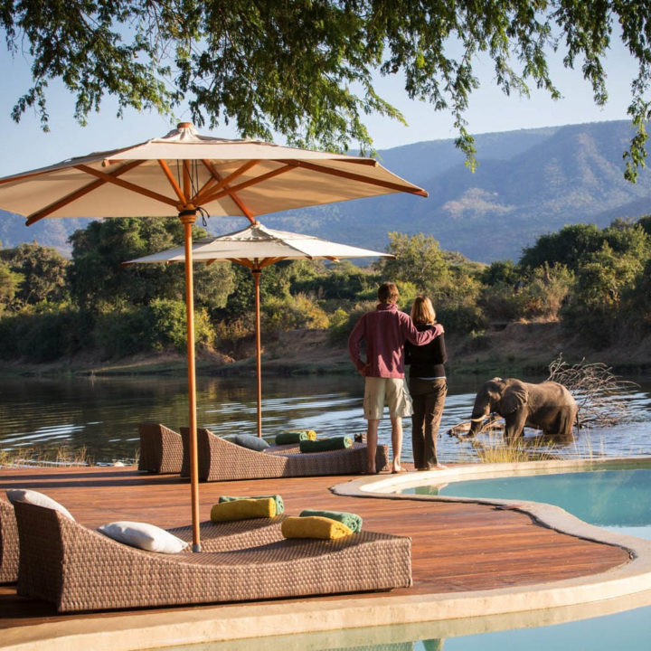 premium-family-adventure-zambia-in-style-safari-packages-tours-luxury-chongwe-safari-house-lower-zambezi-pool-elephants