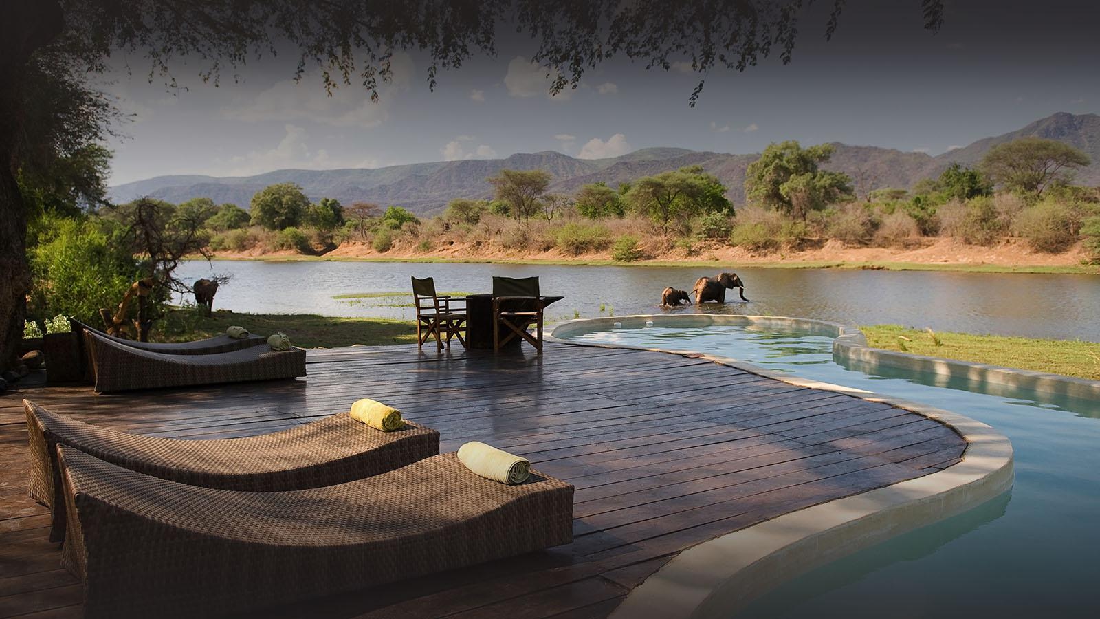 premium-family-adventure-zambia-in-style-safari-packages-tours-luxury-chongwe-safaris-elephants