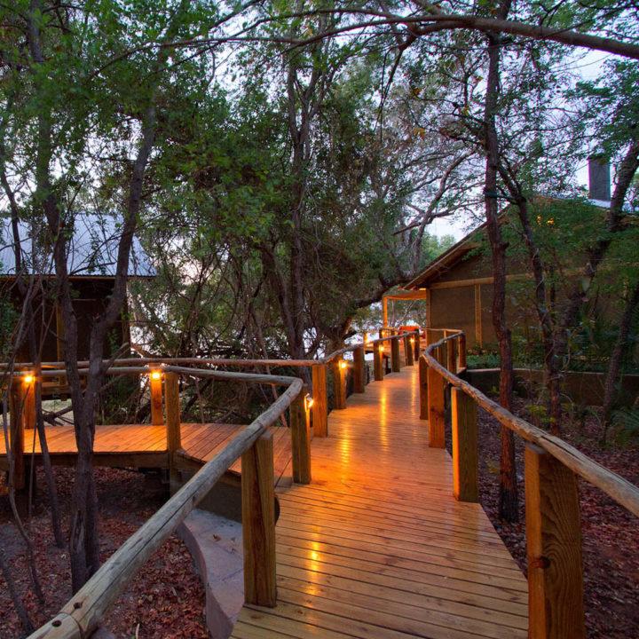 premium-family-adventure-zambia-in-style-safari-packages-tours-luxury-tongabezi-dog-house-path-evening