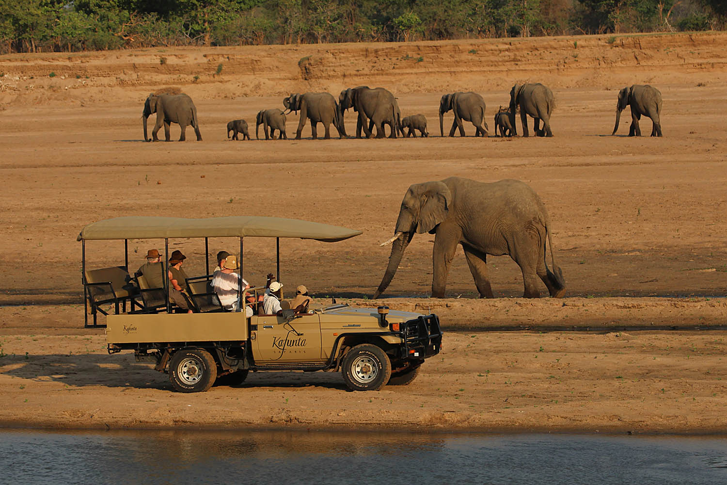 kafunta river lodge zambia-in-style-safari-packages-lodges-game-drive