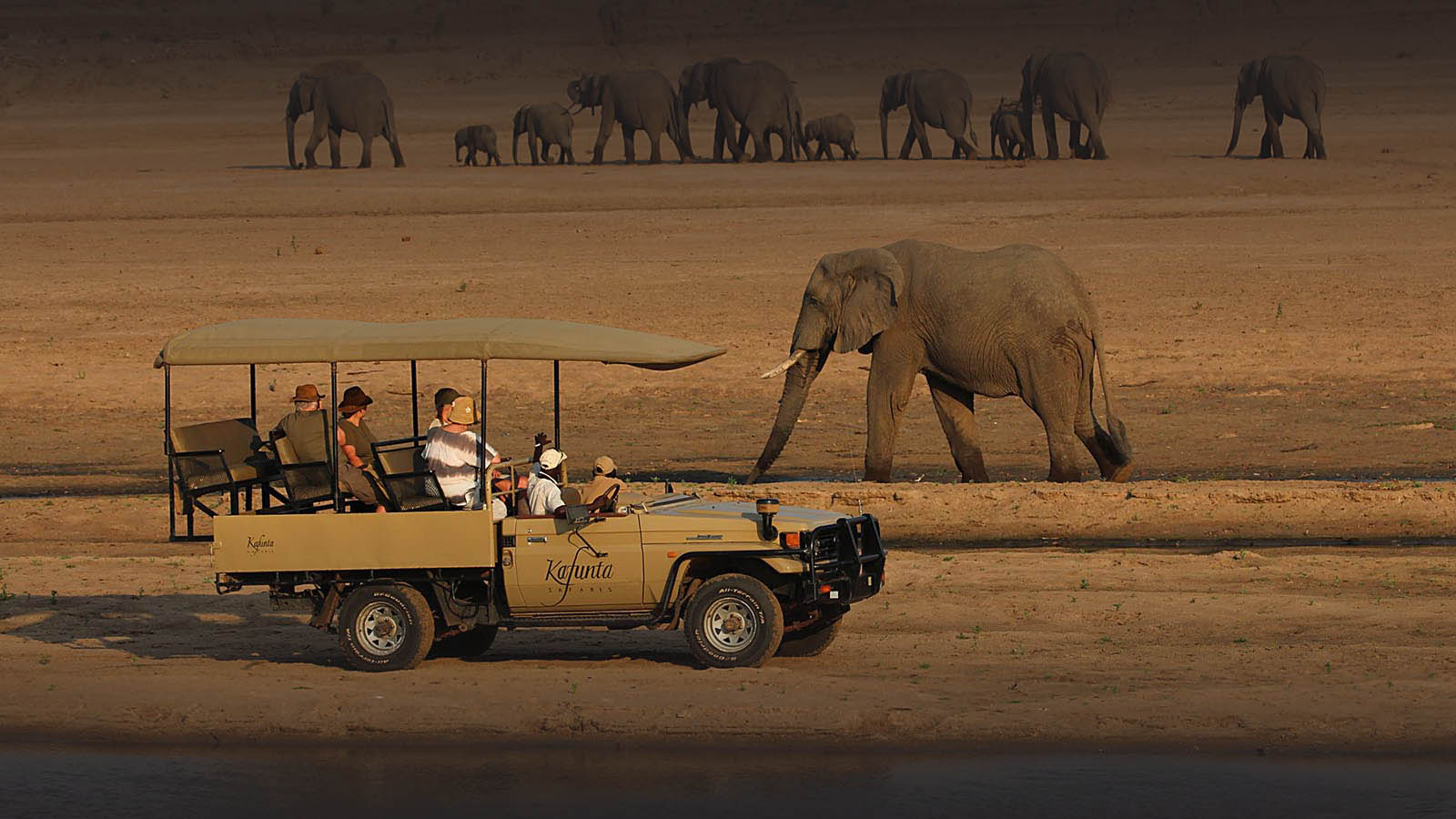 kafunta-zambia-in-style-safari-packages-lodges-game-drives-elephants