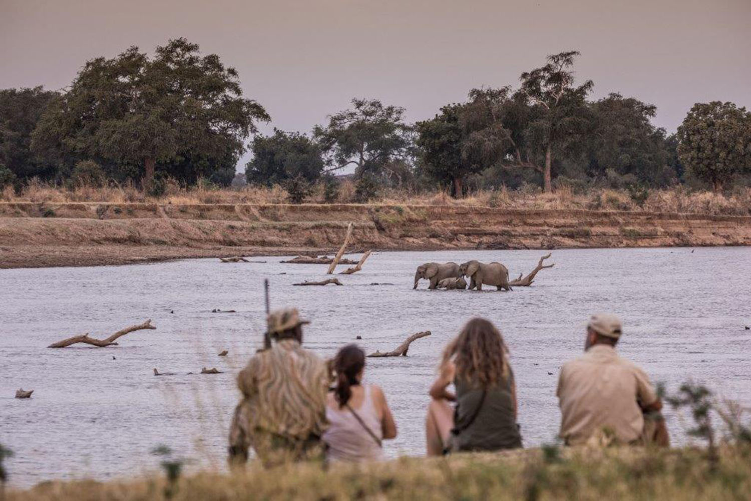 chikoko trails crocodile-camp-zambia-in-style-tours-safari-packages-lodges-travel-explore-south-luangwa-national-park-remote-walking-trails
