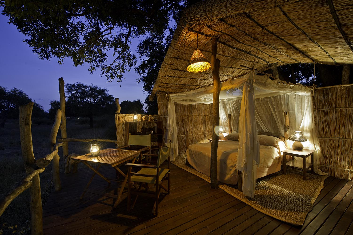 flatdogs-camp-zambia-in-style-tours-safari-packages-lodges-explore-south-luangwa-national-park-jackalberry-treehouse