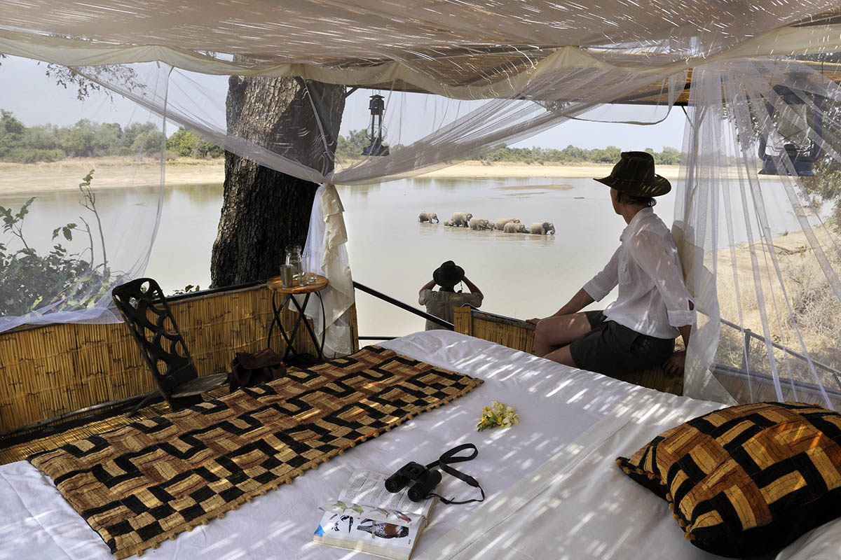 kaingo-camp-luxury-lodge-zambia-in-style-tours-safari-packages-lodges-south-luangwa-national-park-elephant-sleep-out