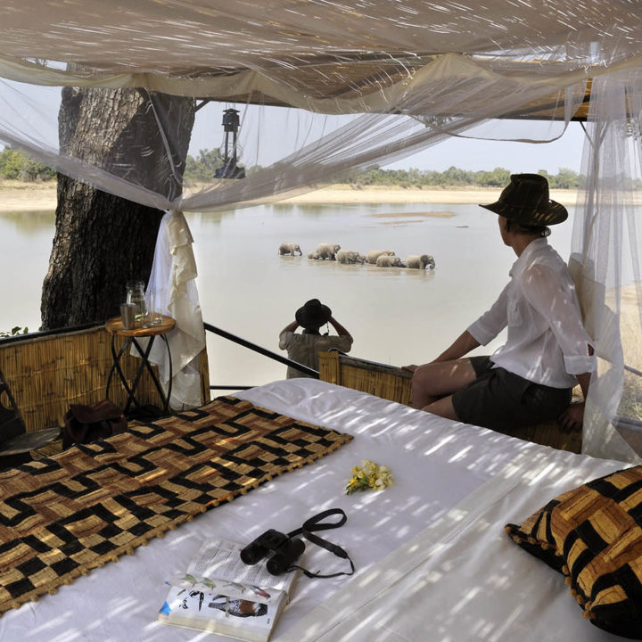 kaingo-camp-luxury-lodge-zambia-in-style-tours-safari-packages-lodges-travel-south-luangwa-national-park-ellie-sleep-out
