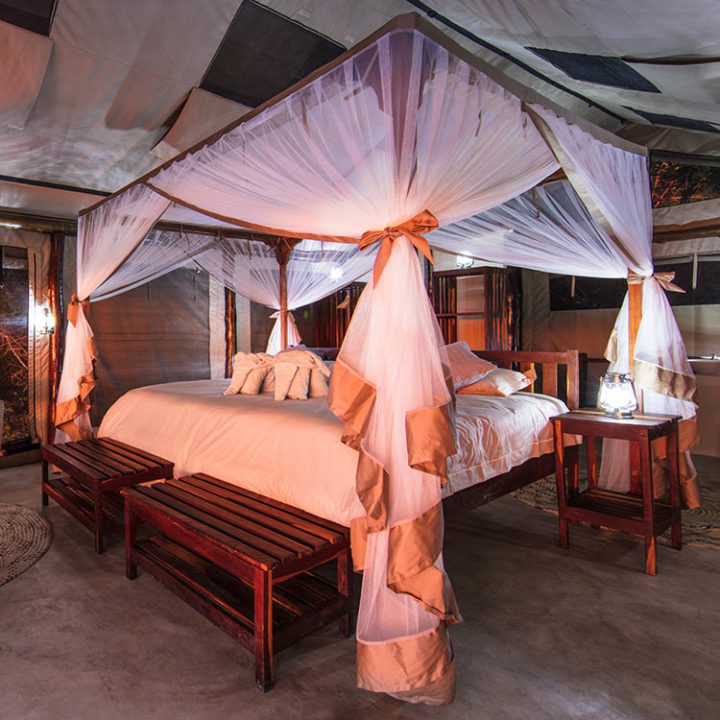 luambe-camp-lodge-zambia-in-style-tours-safari-packages-lodges-luambe-national-park-between-south-north-luangwa-bed