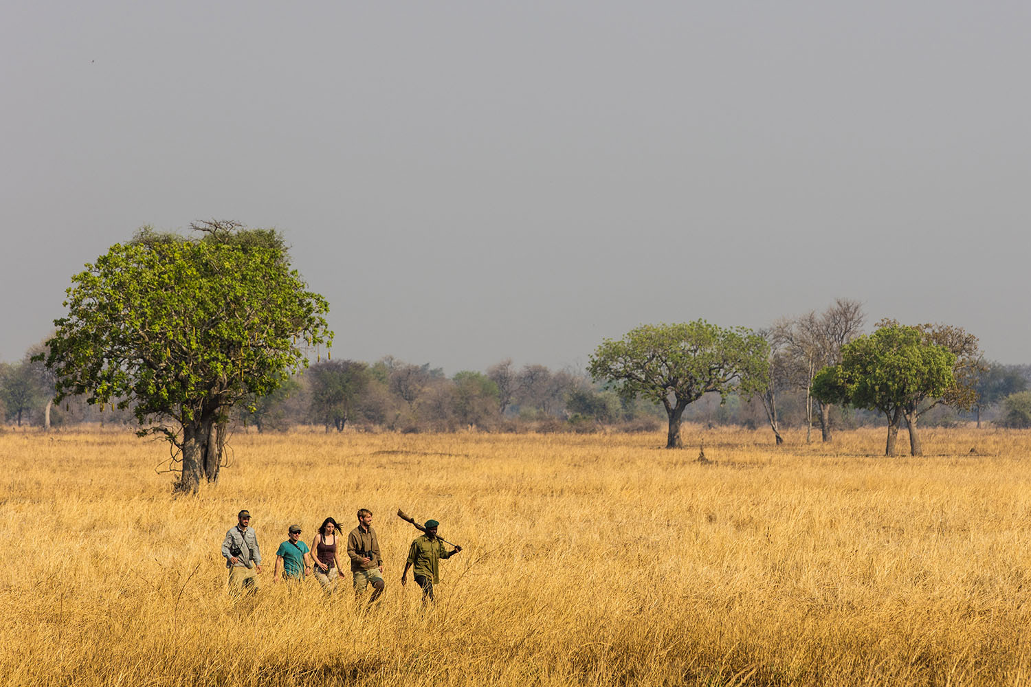 luambe-camp-lodge-zambia-in-style-tours-safari-packages-lodges-luambe-national-park-between-south-north-luangwa-walking-safari-guided