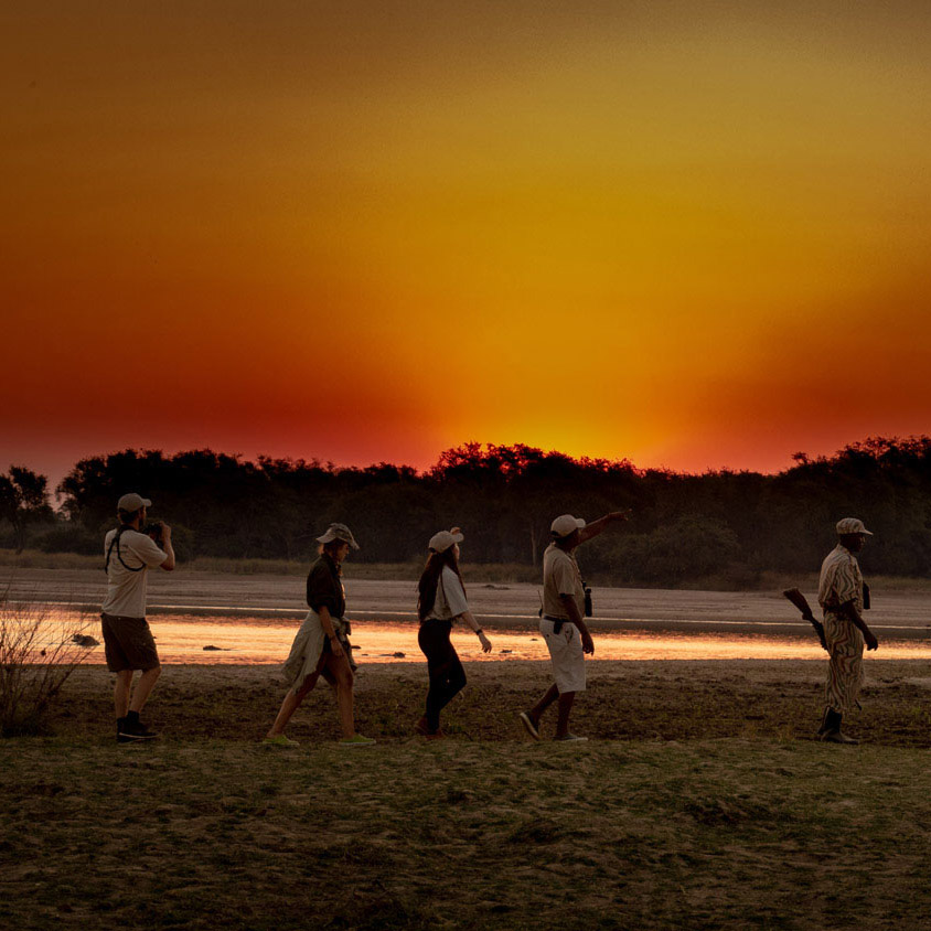luambe-camp-lodge-zambia-in-style-tours-safari-packages-lodges-luambe-national-park-between-south-north-luangwa-walking