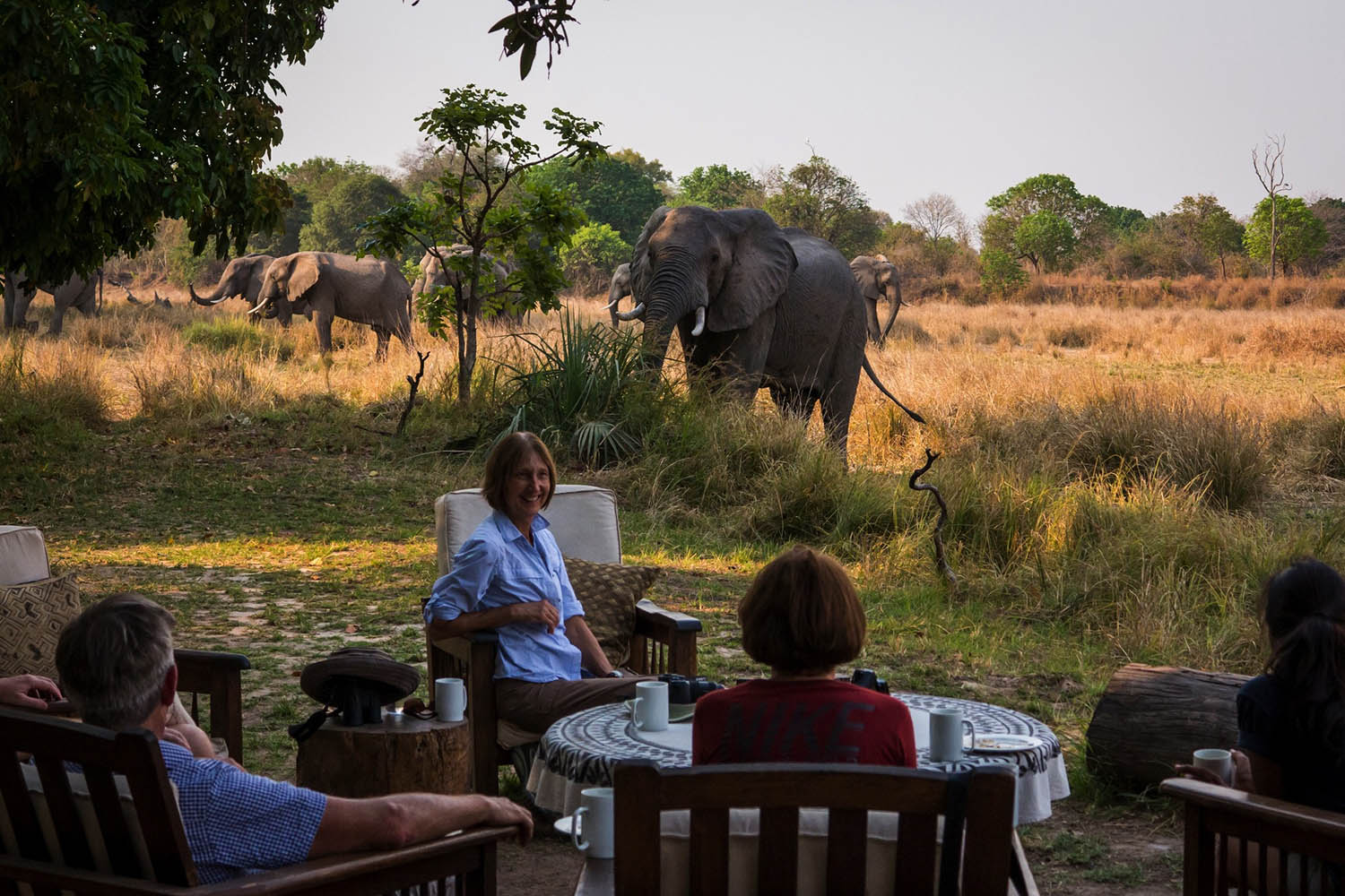 luwi-camp-lodge-zambia-in-style-tours-safari-packages-lodges-south-luangwa-national-park-dining-elephants