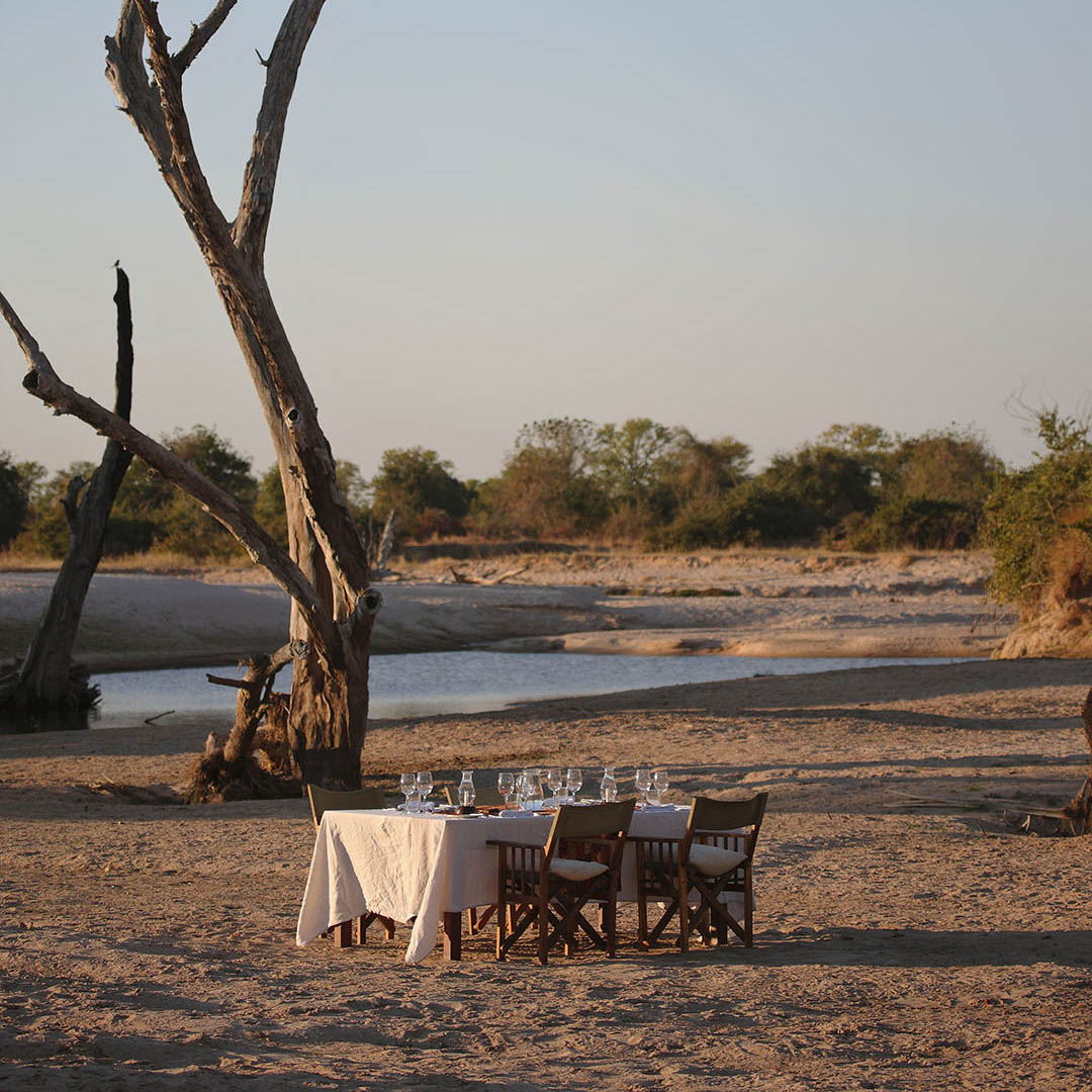 nsolo-lodge-zambia-in-style-tours-safari-packages-lodges-south-luangwa-national-park-tree