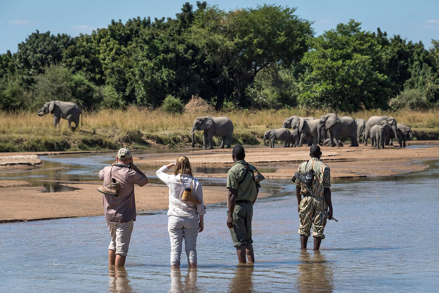rps-mobile-walking-safari-lodge-zambia-in-style-tours-safari-packages-lodges-south-luangwa-national-park-guiding-walks