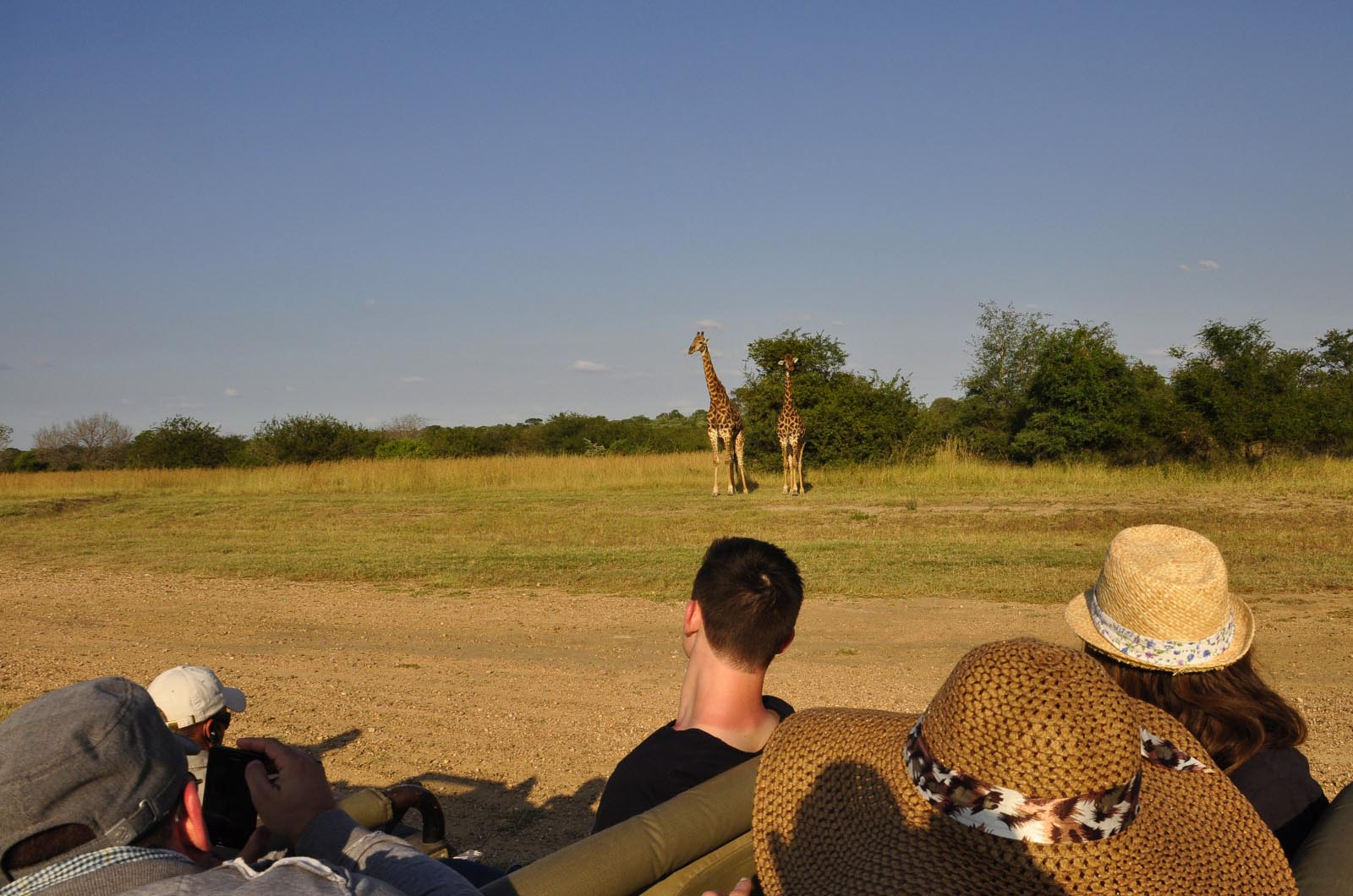 chikunto-lodge-zambia-in-style-safari-packages-lodges-luxury-tents-south-luangwa-location-game-giraffe
