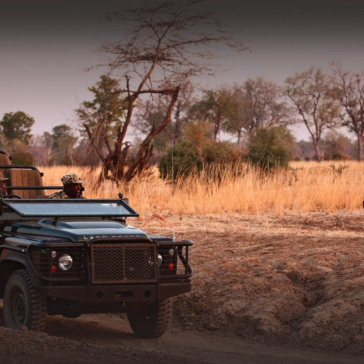 kakuli-beautiful-camp-lodge-zambia-in-style-tours-safari-packages-lodges-explore-south-luangwa-national-park-wildlife-photography-safari