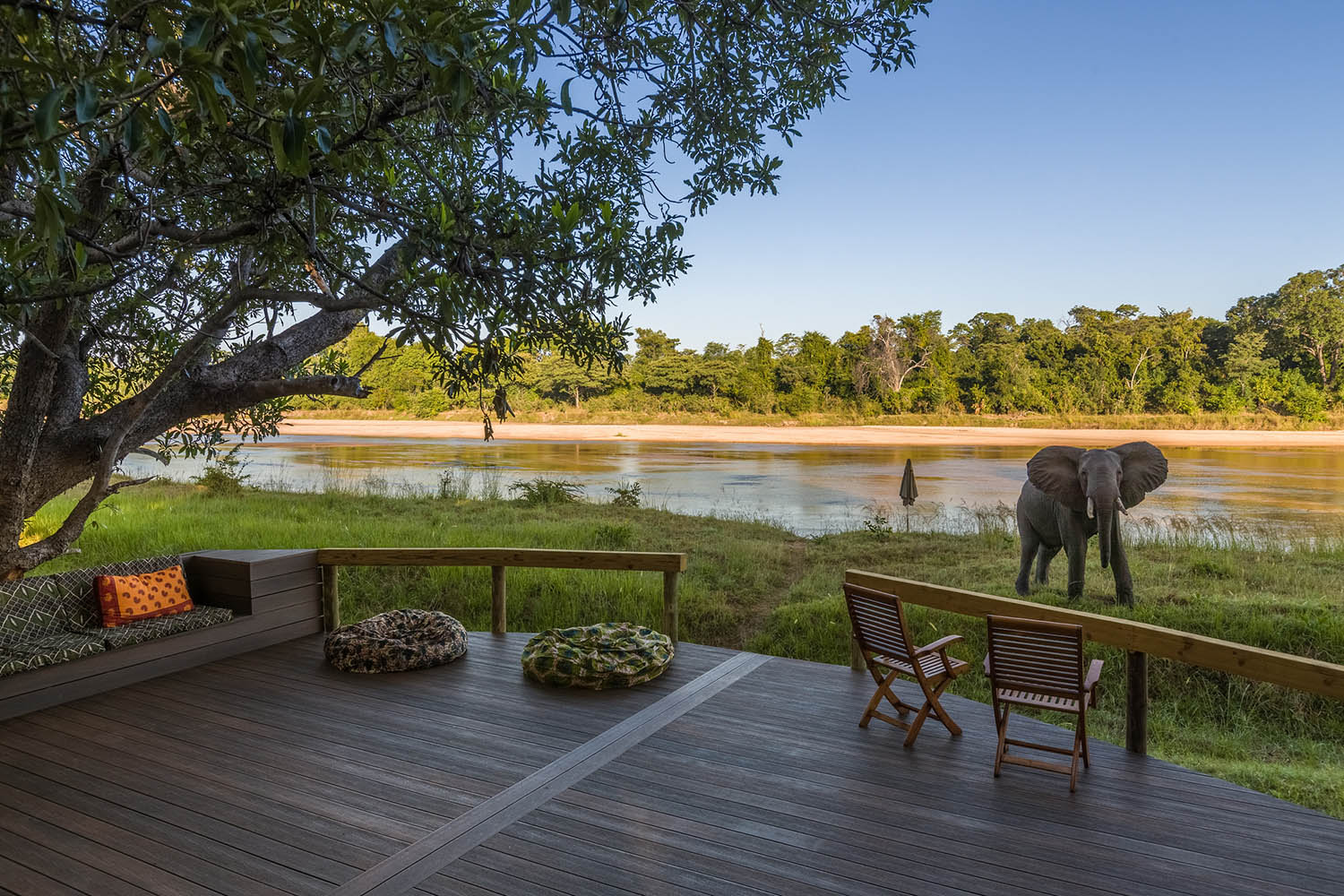 kapamba bushcamp lodge-zambia-in-style-safari-packages-lodges-south-luangwa-national-park-deck-view-elephant
