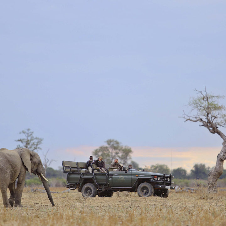lion camp lodge-zambia-in-style-safari-packages-tours-south-luangwa-national-park-beautiful-scenery-elephant
