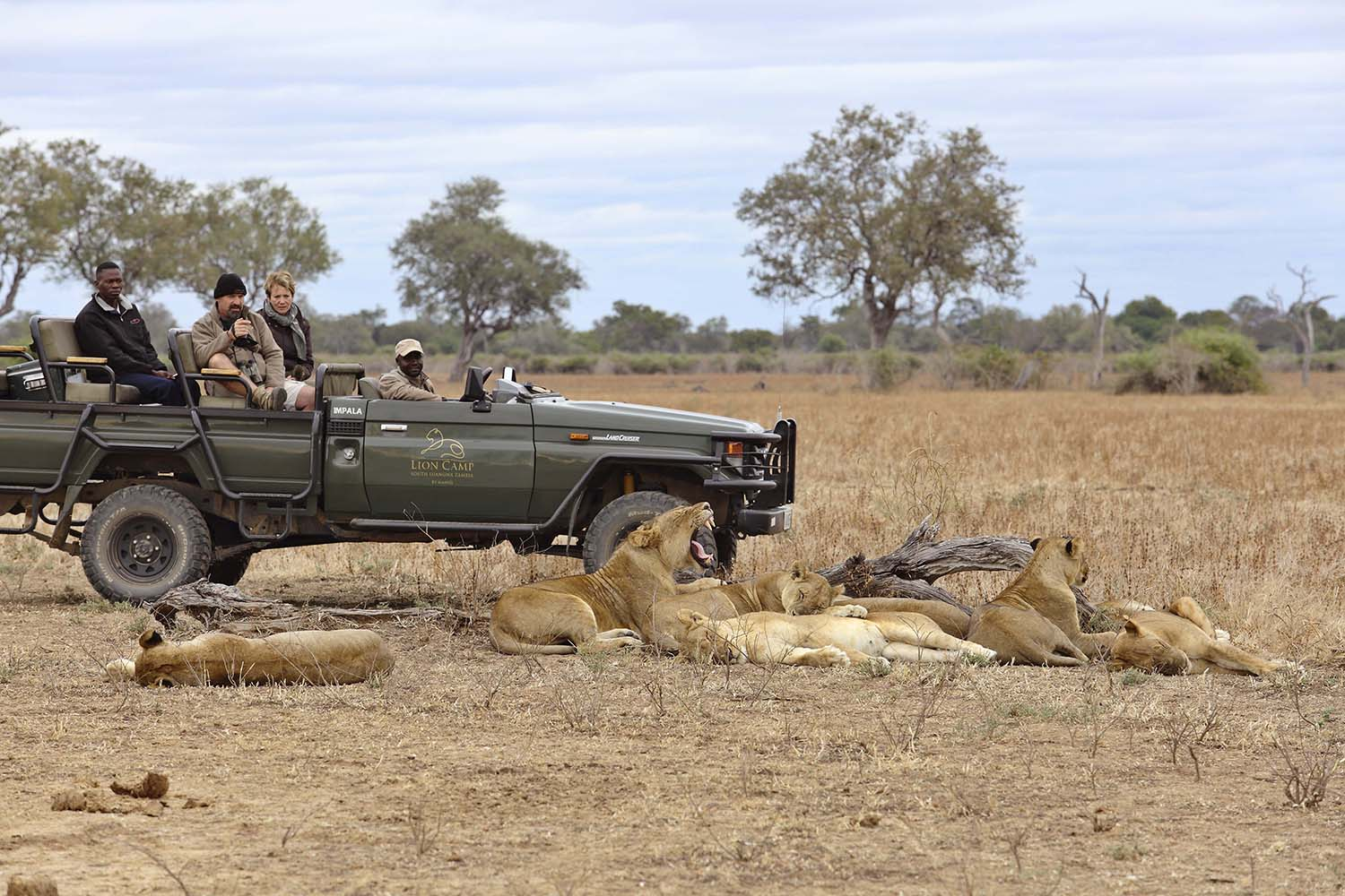 lion camp lodge zambia-in-style-safari-packages-tours-south-luangwa-national-park-famous-hollywood-pride