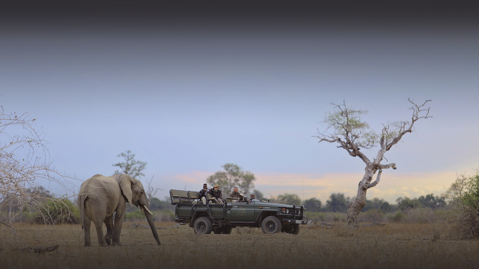 lion camp lodge-zambia-in-style-safari-packages-tours-south-luangwa-national-park-game-drives-elephants