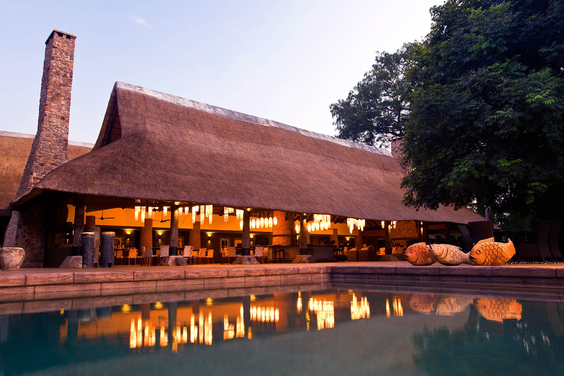 mfuwe-bush-camp-zambia-in-style-safari-packages-south-luangwa-national-park-pool-bar