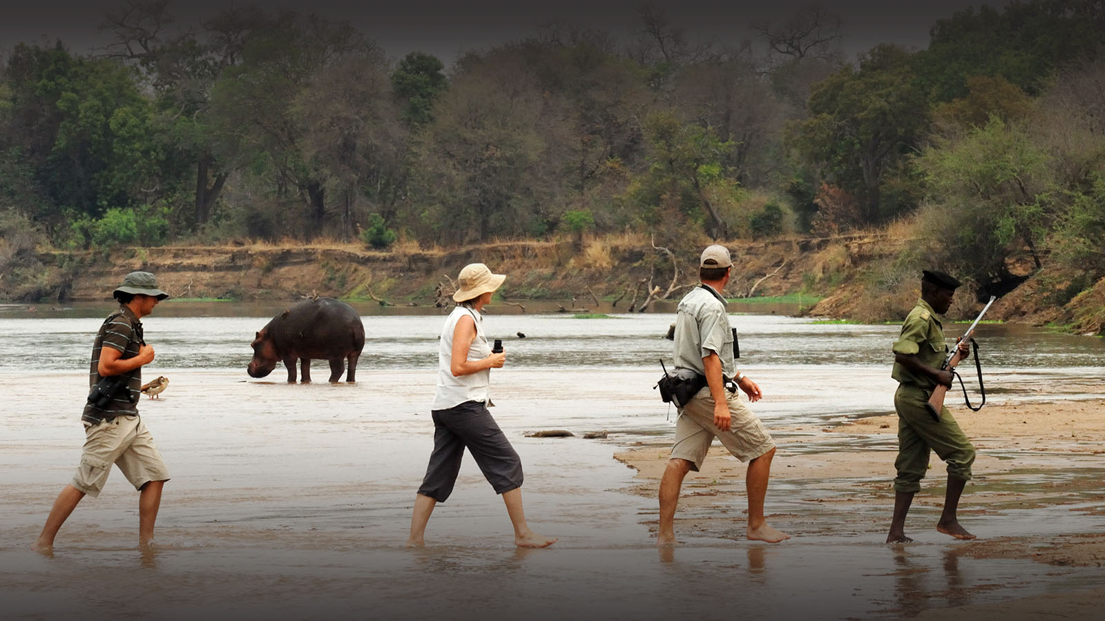 mwaleshi-camp-lodge-zambia-in-style-tours-safari-packages-lodges-explore-north-luangwa-hippo-river-crossing