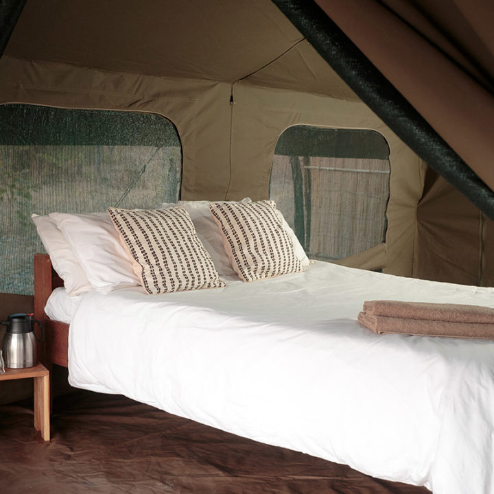 nkonzi-camp-lodge-zambia-in-style-safari-packages-lodges-exploring-south-luangwa-national-park-tent-interior