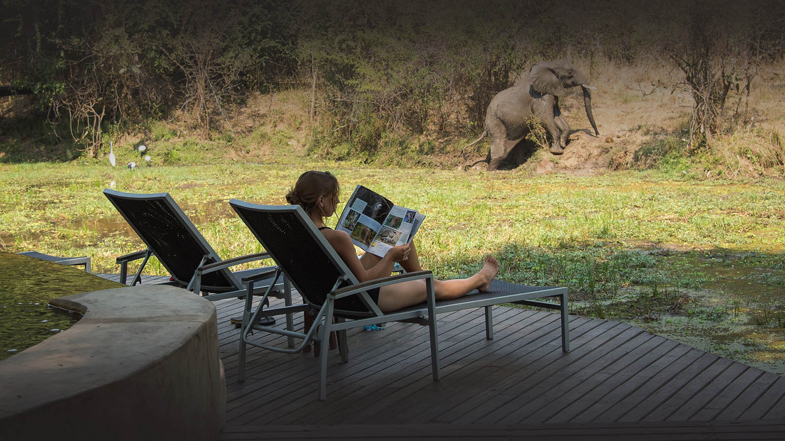 nkwali-zambia-in-style-safari-packages-south-luangwa-national-park-elephant-deck