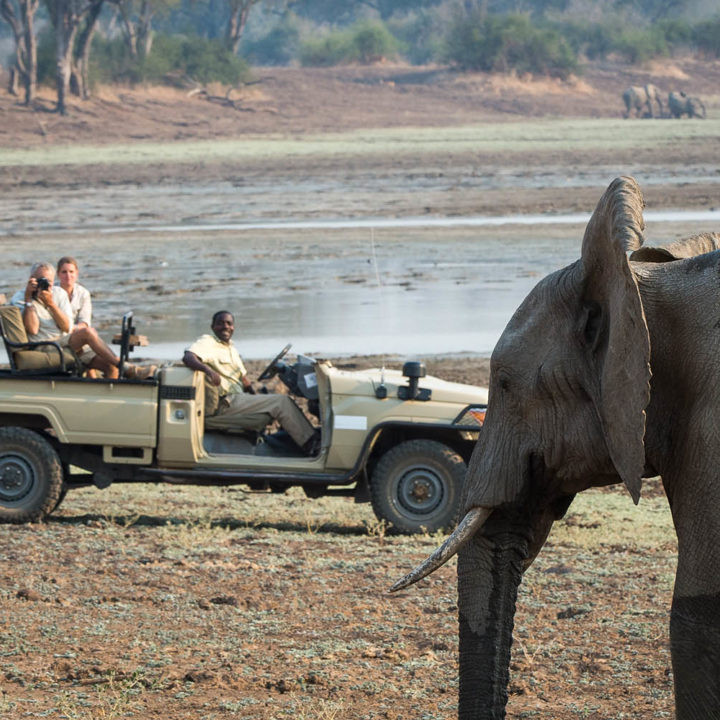tena tena camp lodge-zambia-in-style-safari-packages-lodges-south-luangwa-national-park-game-drive-elephant