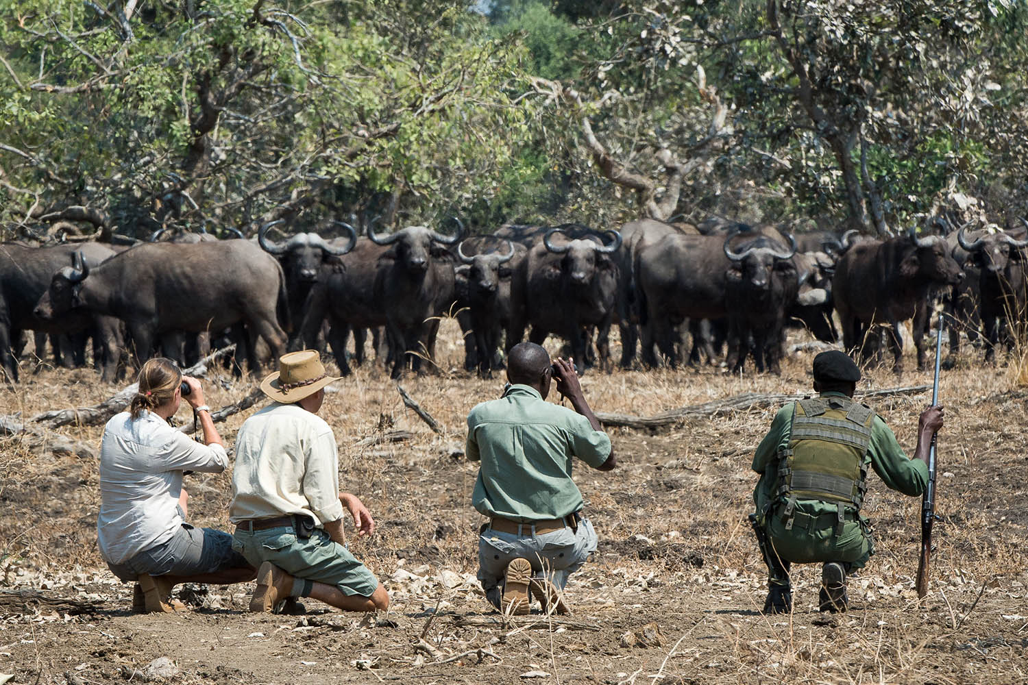 tena tena camp lodge-zambia-in-style-tours-safari-packages-lodges-south-luangwa-national-park-walking-wlidlife