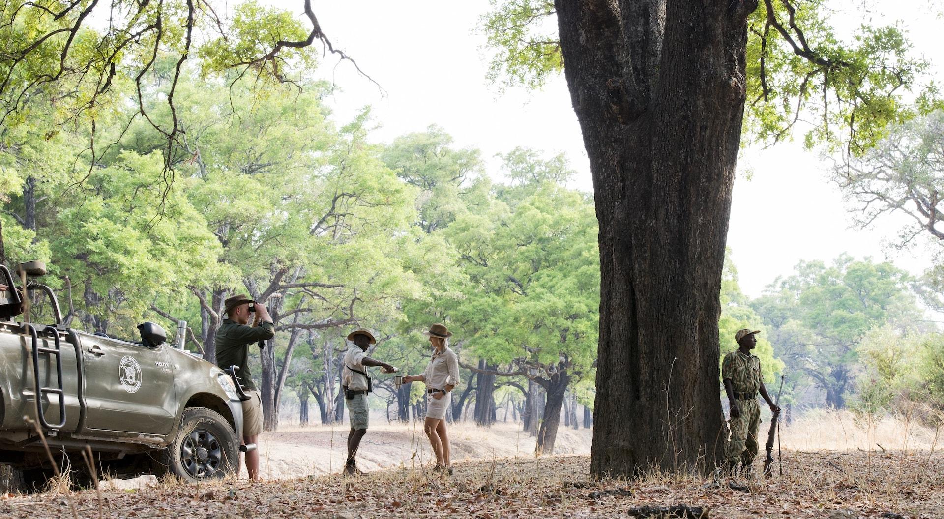 Shenton Safaris Game Drive