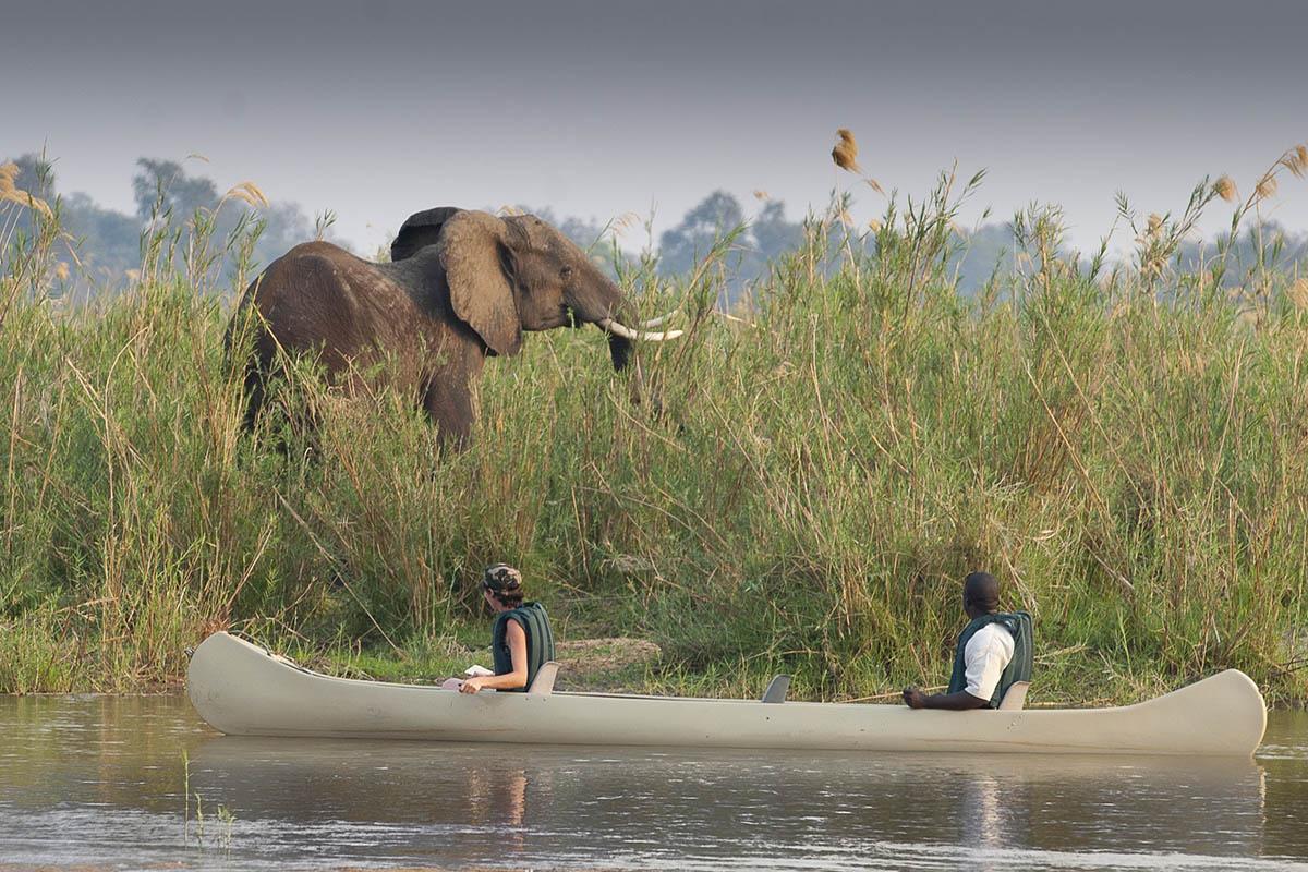 baines river camp zambia-in-style-safari-packages-lodges-lower-zambezi-african-safari-canoe-elephant