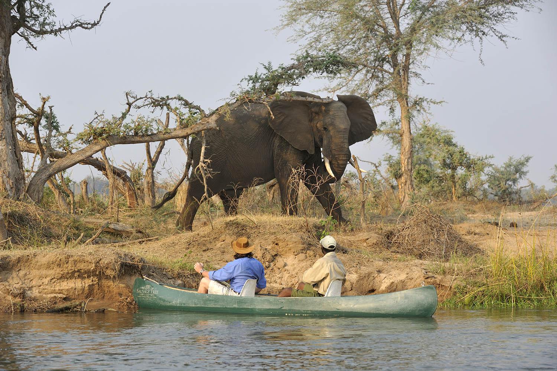 potato bush camp lodge-zambia-in-style-safari-packages-lodges-lower-zambezi-national-park-activity-canoeing