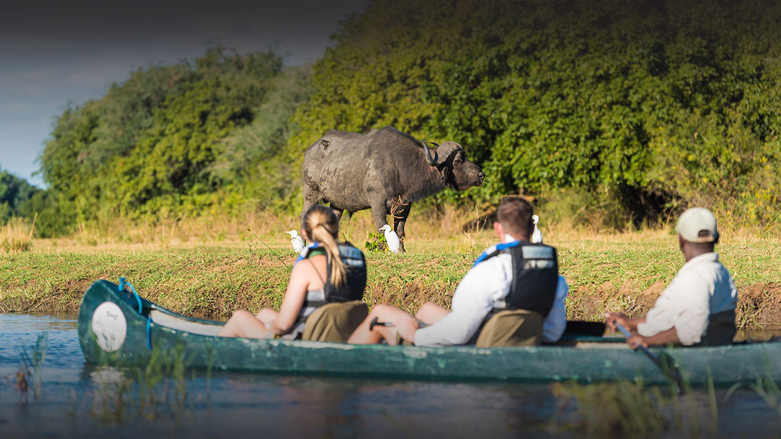 the royal zambezi zambia-in-style-safari-packages-lodges-lower-zambezi-canoeing-buffalo-river