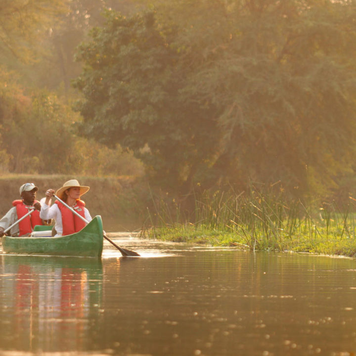 the royal zambezi zambia-in-style-safari-packages-lodges-lower-zambezi-location-canoeing