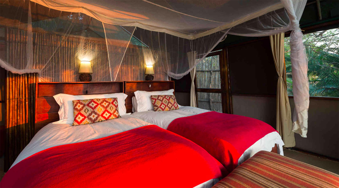 busanga bush camp zambia-in-style-safari-packages-lodges-kafue-national-park-canvas-chalets-beds