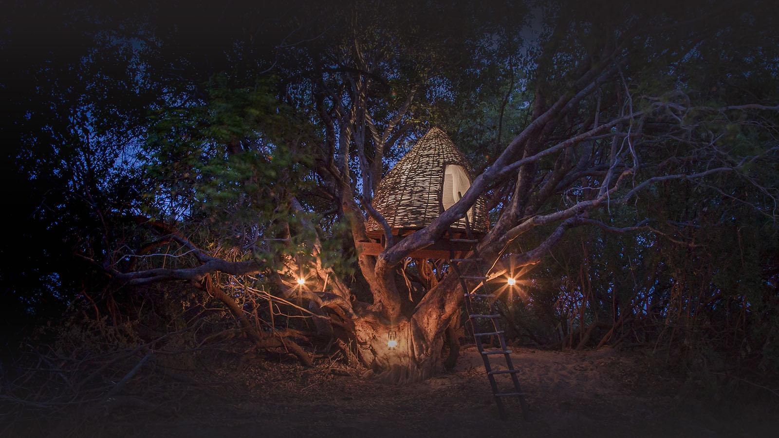kaingu safari lodge zambia-in-style-safari-packages-lodges-explore-kafue-national-park-tree-house