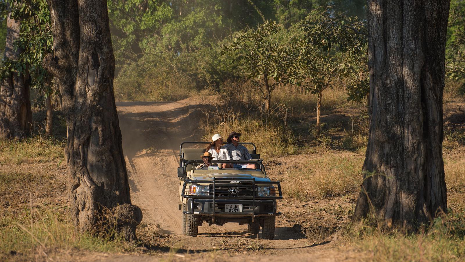 tena tena safari