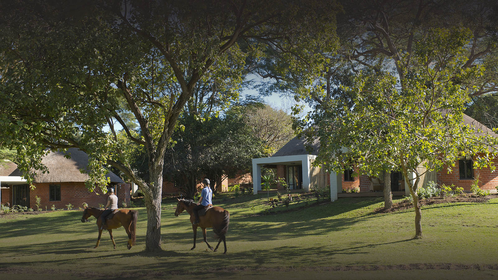 lilayi lodge zambia-in-style-tours-safari-packages-lodges-accommodation-lusaka-horse-rides