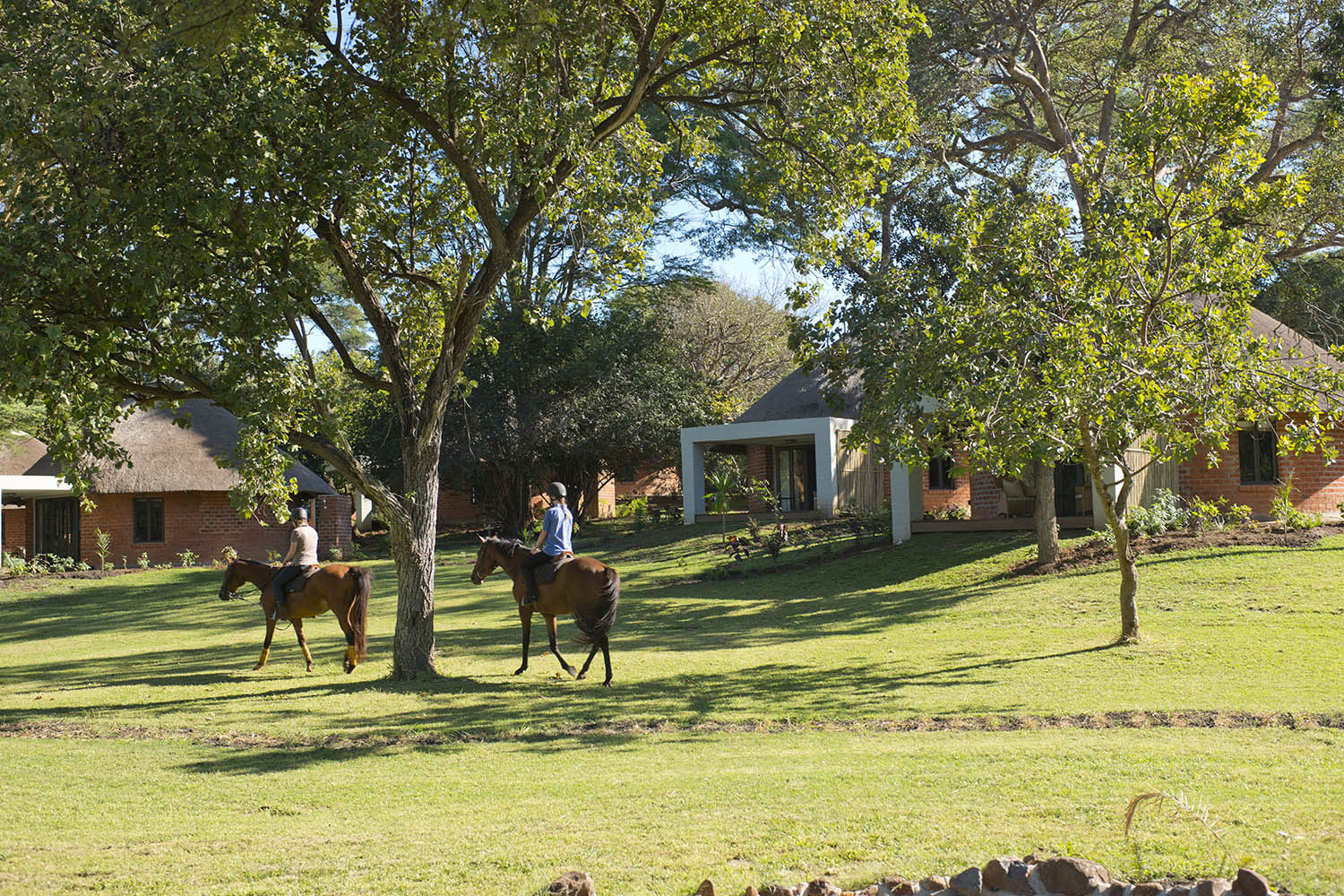 lilayi lodge zambia-in-style-tours-safari-packages-lodges-lusaka-accommodation-activities-horse-riding