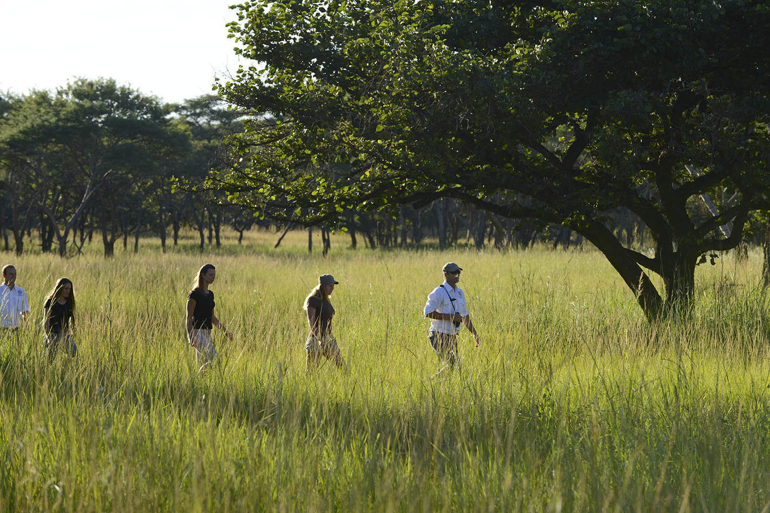lilayi lodge zambia-in-style-tours-safari-packages-lodges-lusaka-accommodation-activities-walking-safari