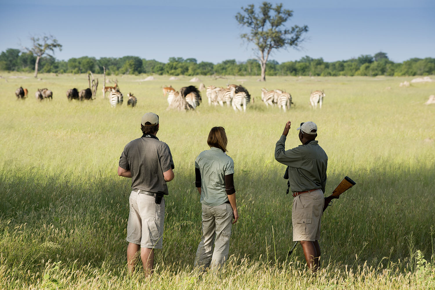 somalisa acacia zimbabwe-lodges-zambia-in-style-safaris-wildlife-africa-hwange-national-park-staff-walking-safari-wildlife