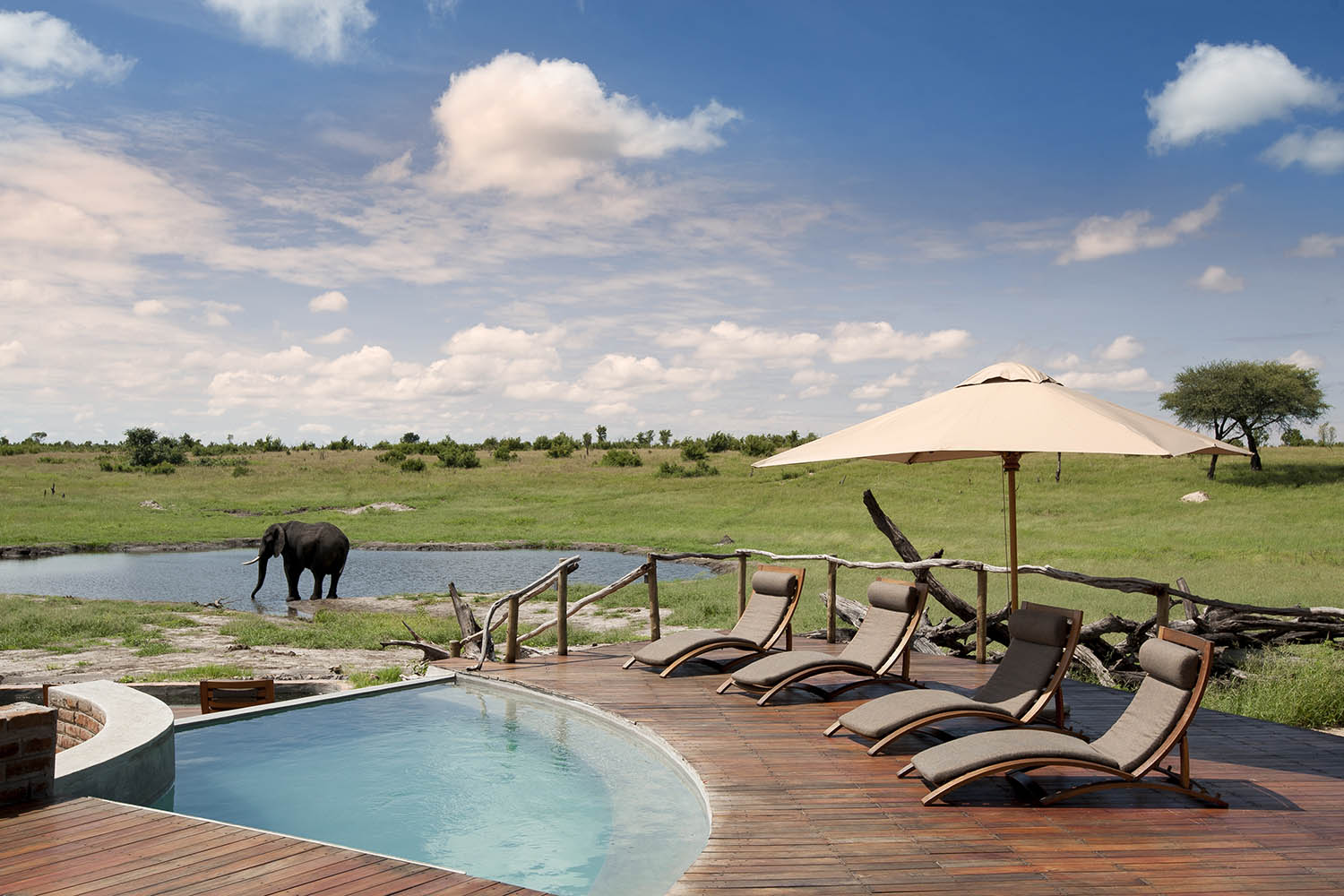 somalisa camp zimbabwe-lodges-zambia-in-style-safaris-wildlife-africa-hwange-national-park-pool-area-elephants