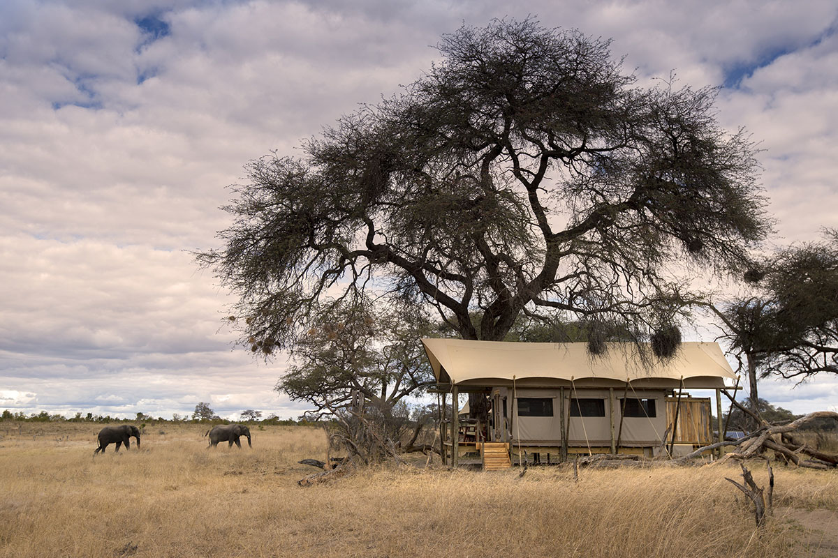 somalisa expeditions zimbabwe-lodges-zambia-in-style-tours-safari-packages-safaris-wildlife-africa-hwange-national-park-african-bush-camps-bedroom-from-outside