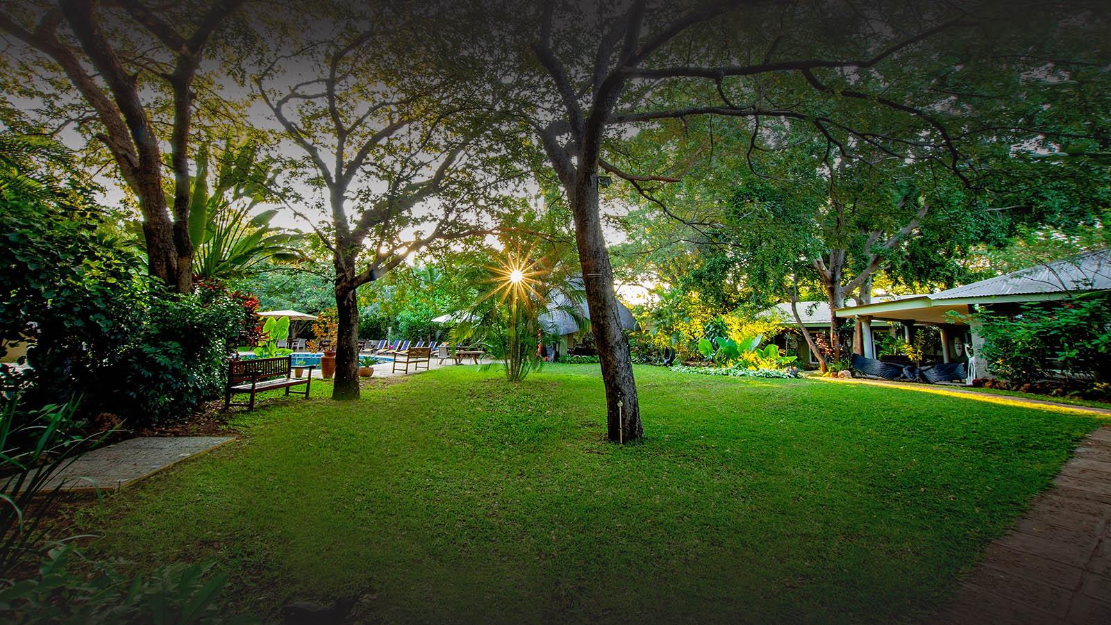bayete guest lodge victoria-falls-zimbabwe-gardens