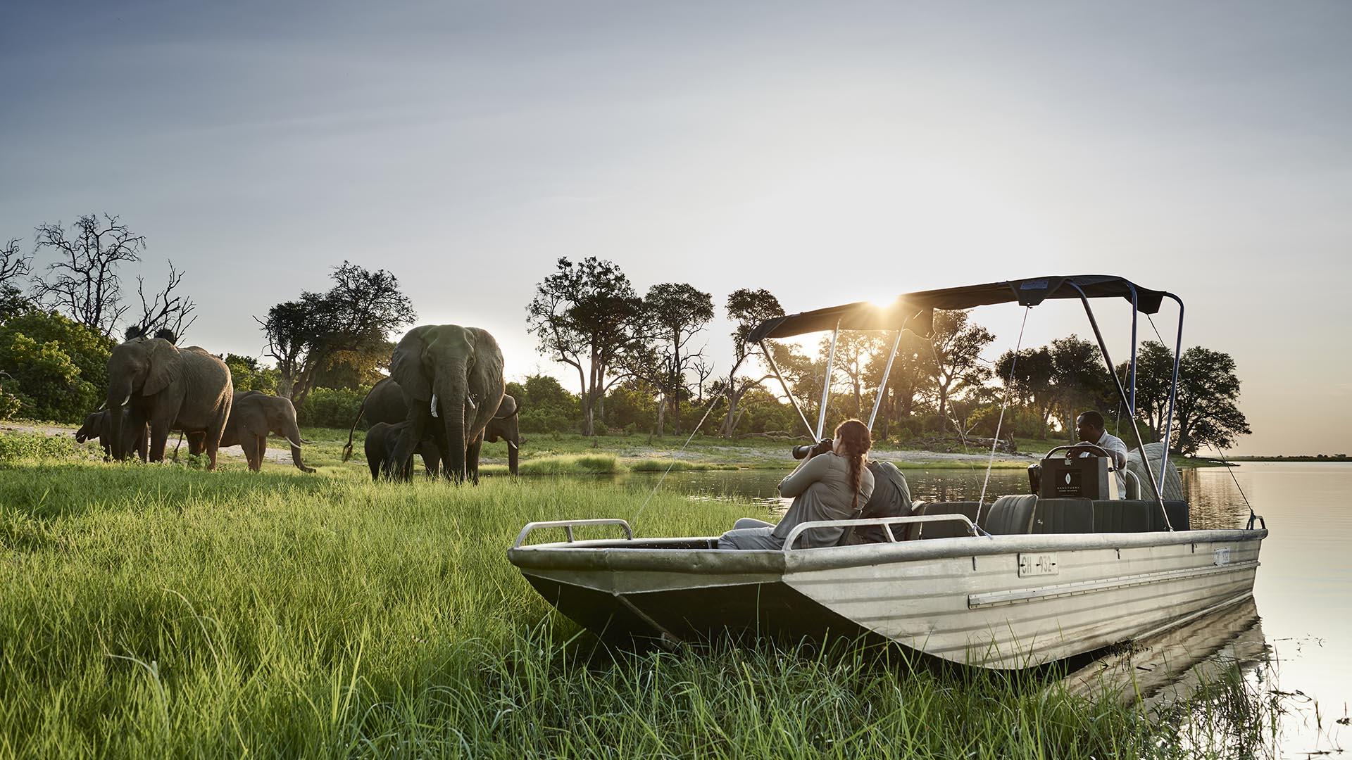 Chobe National Park Sanctuary Chobe Chilwero Botswana