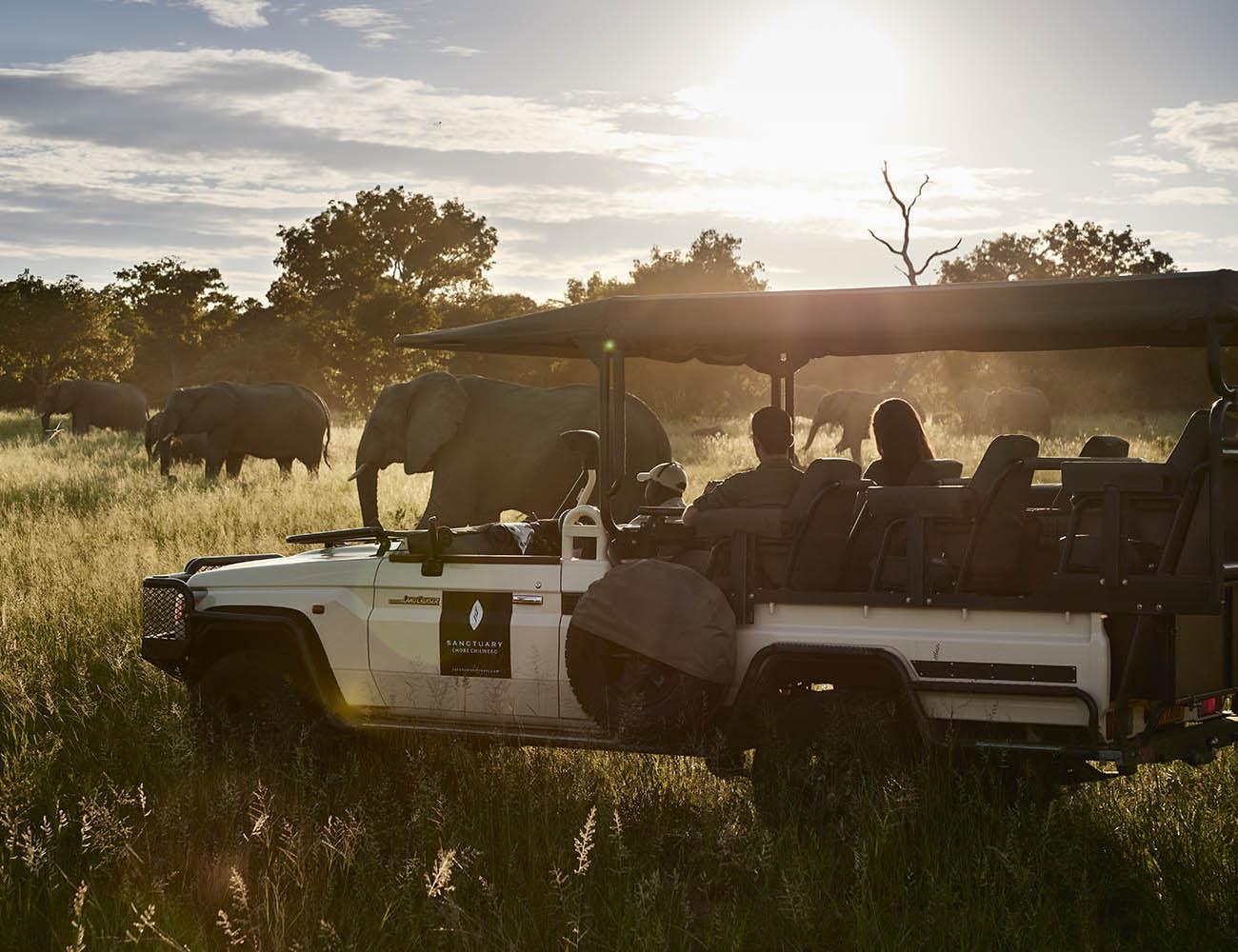 chobe chilwero botswana-lodges-zambia-in-style-chobe-national-park-guides-game-drive-elephants