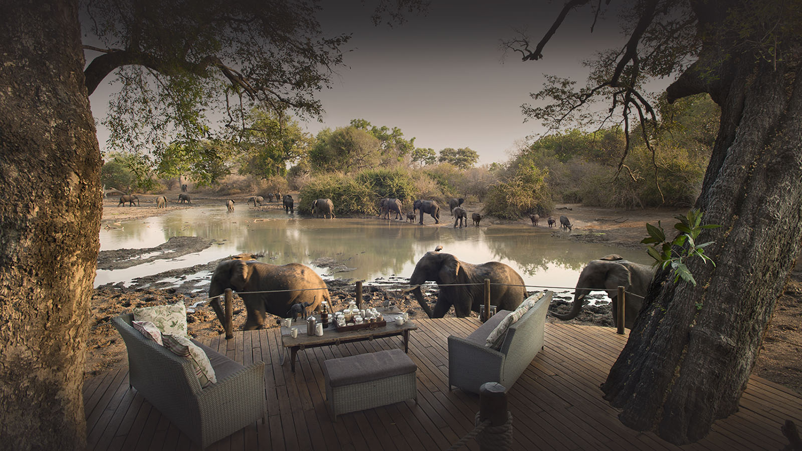 kanga bush camp mana-pools-national-park-lodges-zimbabwe-accommodation-african-bush-camps-elephants-main-deck